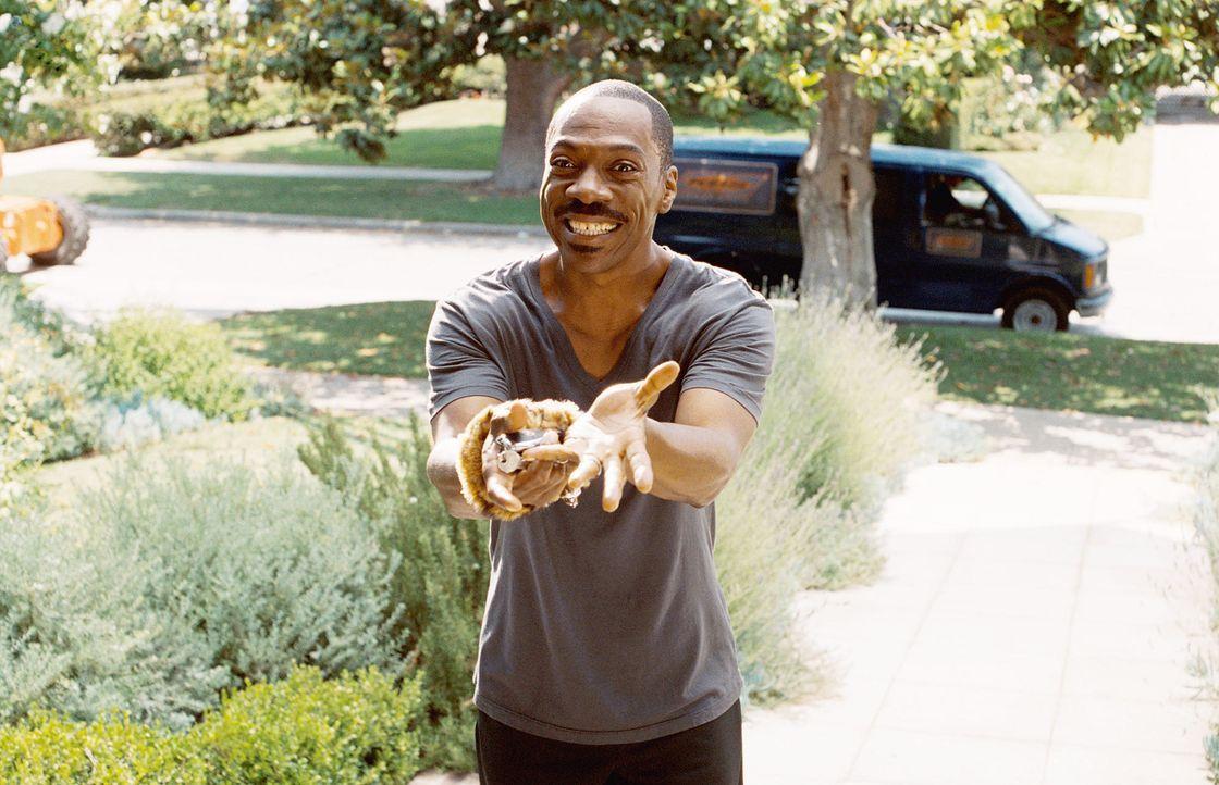 worte-08-paramountjpg 1990 x 1283 - Bildquelle: 2012 DW Studios L.L.C./Paramount