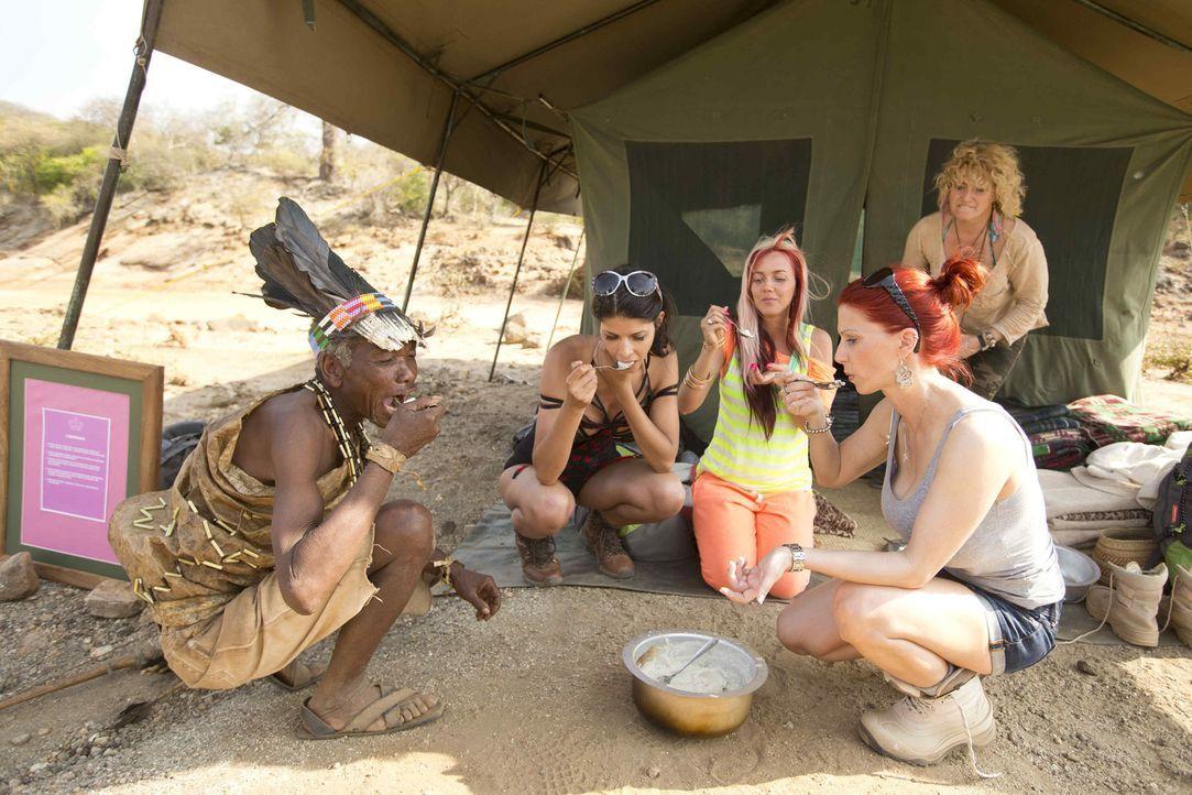 Am Fuße des Kilimandscharo bestreiten Micaela (2.v.l.), Sexy Julia, (M.), Bettie (2.v.r.) und Sabrina (r.) den härtesten Roadtrip ihres Lebens ... - Bildquelle: Guido Ohlenbostel ProSieben
