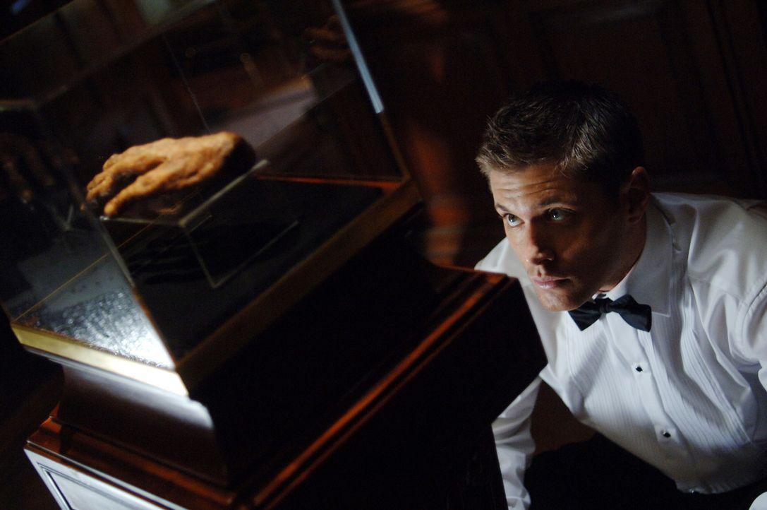 Geht mysteriösen Todesfällen nach: Dean Winchester (Jensen Ackles) ... - Bildquelle: Warner Bros. Television