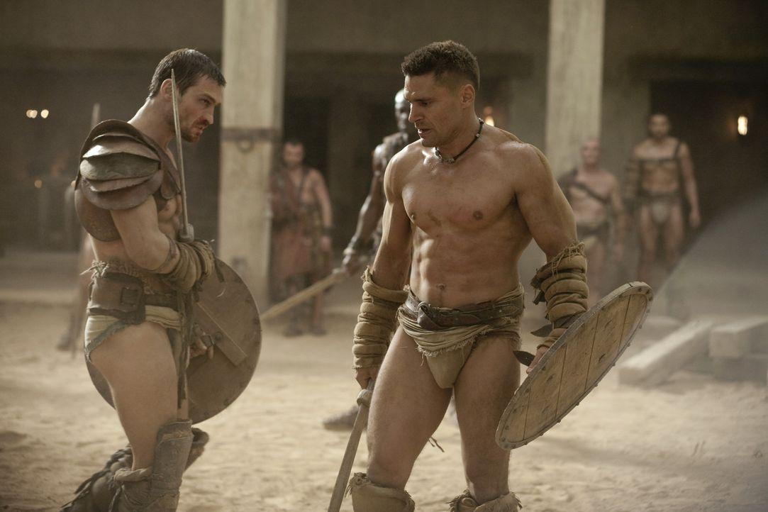 Können sich nicht ausstehen, haben aber nur gemeinsam eine Chance gegen den Titanen der Arena: Spartacus (Andy Whitfield, l.) und Crixus (Manu Benn... - Bildquelle: 2010 Starz Entertainment, LLC