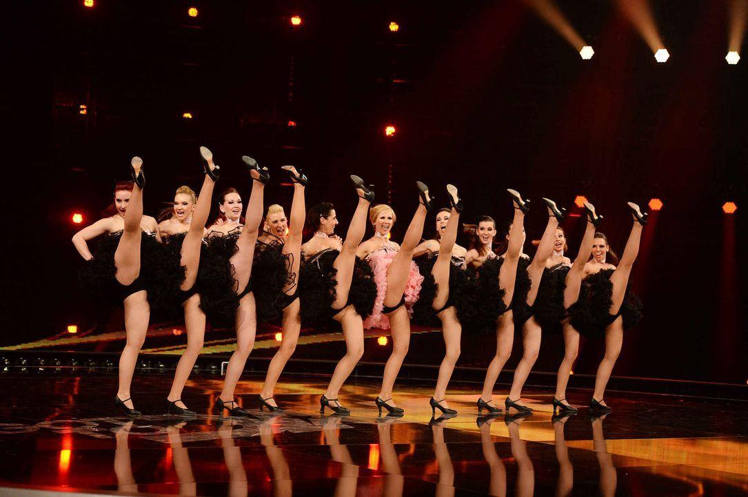 Got-To-Dance-KataMackh-Dance-Company-08-SAT1-ProSieben-Willi-Weber - Bildquelle: SAT.1/ProSieben/Willi Weber