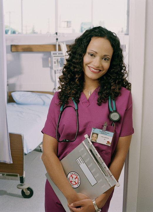 (1. Staffel) - Als altgediente Krankenschwester kennt Carla (Judy Reyes) die Ängste der jungen Assistenzärzte. Kompetent führt sie diese in ihre vie... - Bildquelle: Touchstone Television