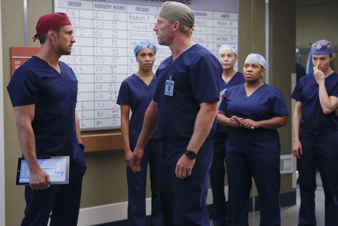 Während sich April Hoffnungen auf eine zweite Chance mit Jackson macht, ist Owen (Kevin McKidd, 3.v.l.) entsetzt darüber, dass Bailey (Chandra Wilso... - Bildquelle: Vivian Zink ABC Studios