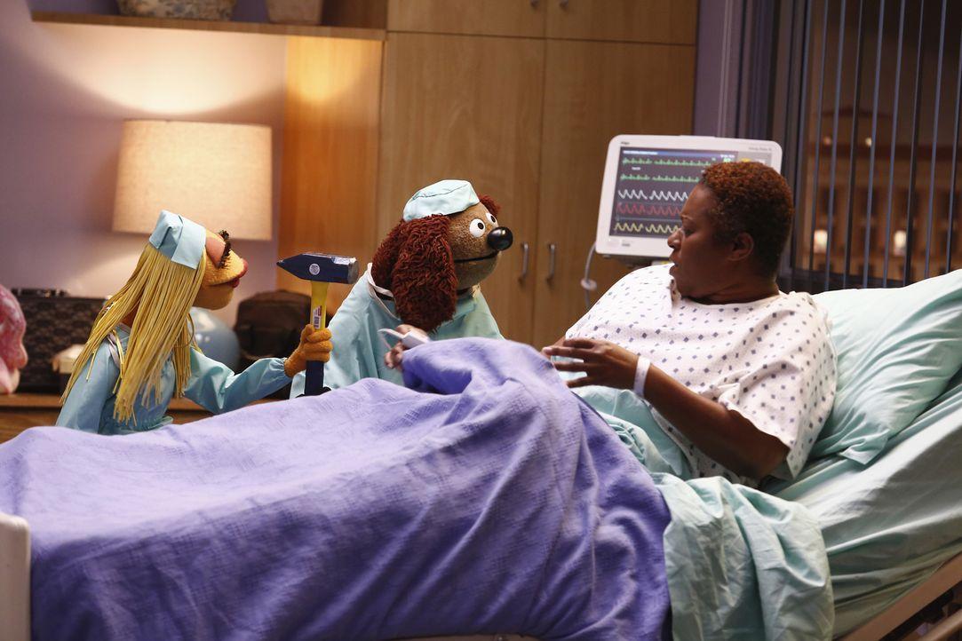 Als die Show von Miss Piggy aus dem Krankenhaus gesendet wird, kümmern sich Janice (l.) und Rowlf (M.) auf ihre Art um eine Patientin (Treisa Gary,... - Bildquelle: ABC Studios
