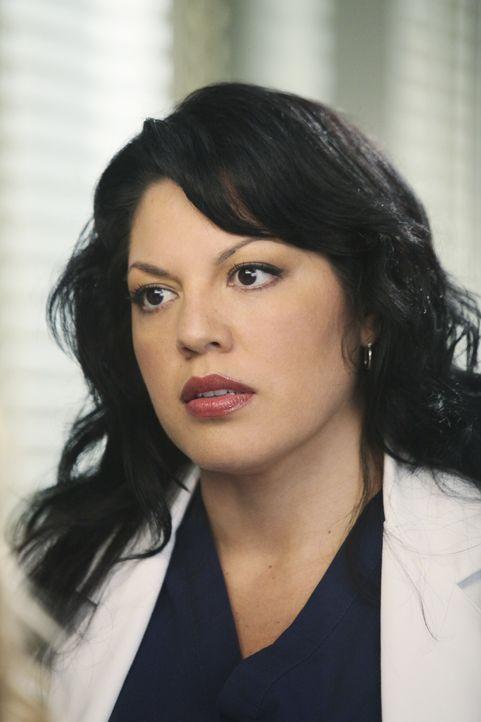 Ahnt noch nicht, welch ein schwarzer Tag auf sie und ihre Kollegen zukommen wird: Callie (Sara Ramirez) ... - Bildquelle: Touchstone Television