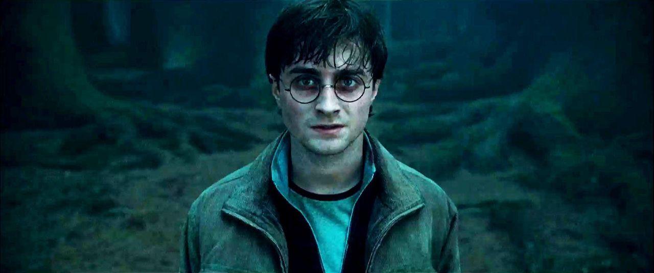 harry-potter-u-d-heiligtuemer-d-todes1-3d-02-warner-bros-entjpg 1400 x 586 - Bildquelle: 2010 Warner Bros. Ent.  Harry Potter Publishing Rights J.K.R.