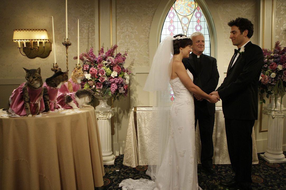 Hätten Jen (Lindsay Sloane, l.) und Ted (Josh Radnor, r.) geheiratet, wenn ihre beiden Dates anderes verlaufen wären? - Bildquelle: 20th Century Fox International Television