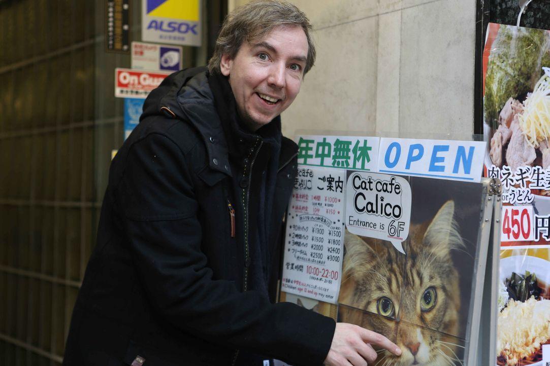Japan: In eine Holzkiste gesperrt, wird Olli an einen extravaganten Ort mit ganz besonderen Menschen und Spezialaufgaben verfrachtet. Ohne Vorbereit... - Bildquelle: Katja Renner ProSieben