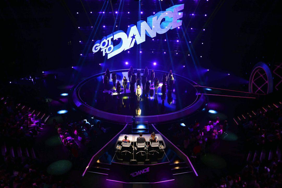 Got-To-Dance-Bigstyle-05-SAT1-ProSieben-Willi-Weber - Bildquelle: SAT.1/ProSieben/Willi Weber