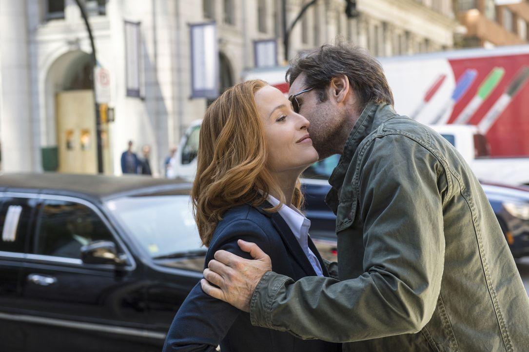 Nach langer Zeit treffen Scully (Gillian Anderson, l.) und Mulder (David Duchovny, r.) wieder aufeinander, als der Fall einer jungen Frau ihre Aufme... - Bildquelle: Ed Araquel 2016 Fox and its related entities.  All rights reserved.