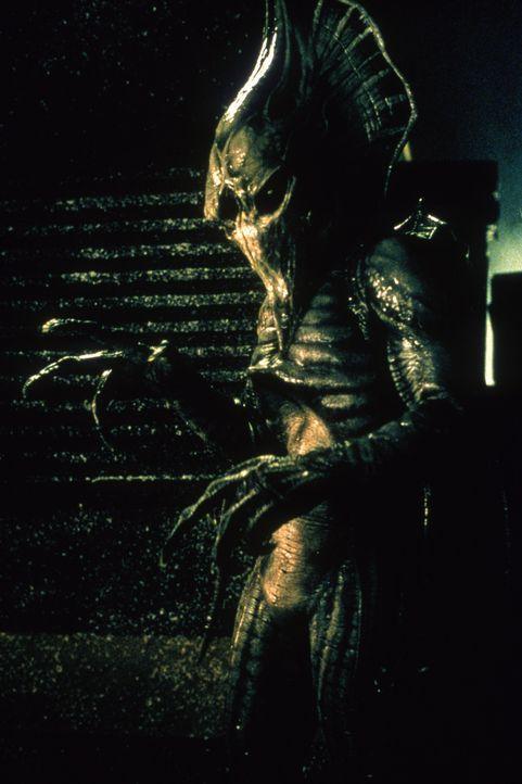 Für die U.S.-Regierung bestätigen sich die schlimmsten Befürchtungen: Friedlich oder nicht, die Aliens sind allein durch ihre Gegenwart eine töd... - Bildquelle: Nu Image
