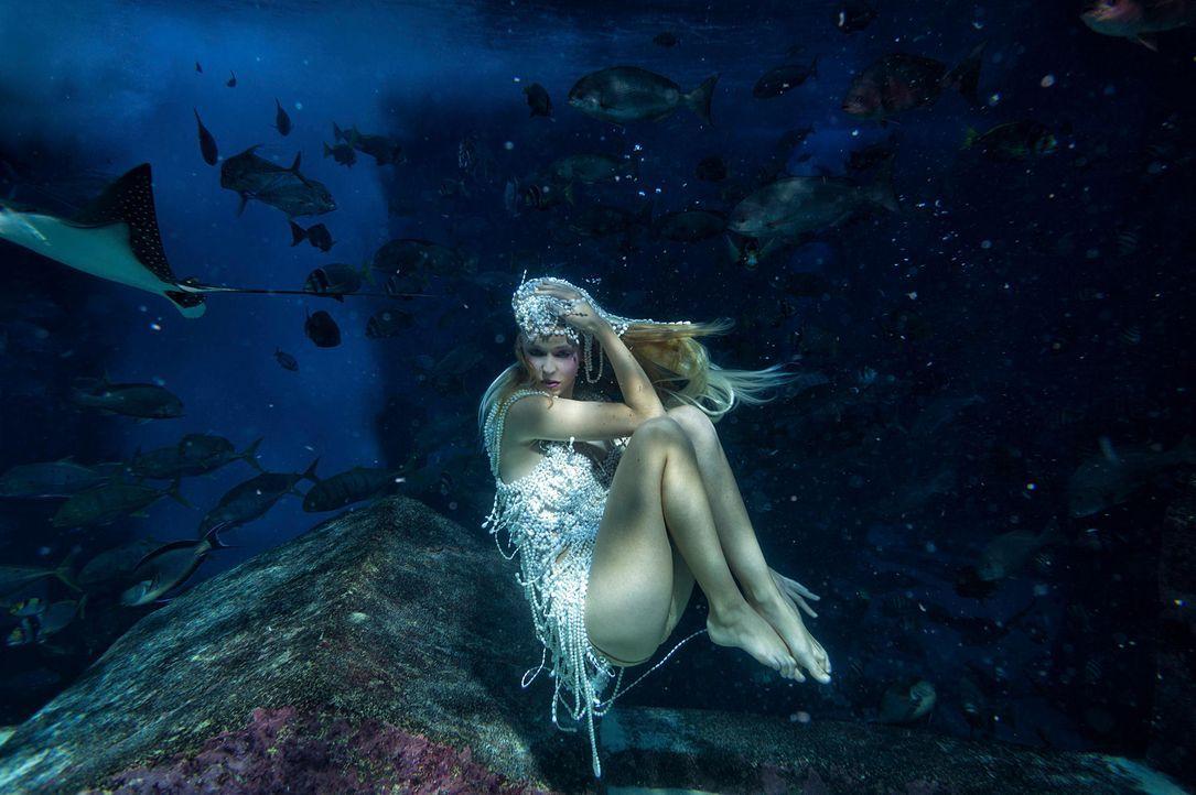 gntm-stf08-epi02-unterwasser-shooting-michelle-russ-kientschjpg 2000 x 1331 - Bildquelle: Russ Kientsch