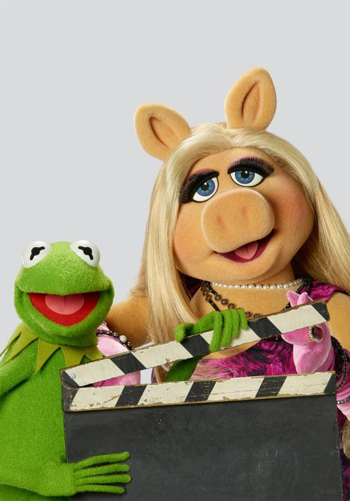 (1. Staffel) - Sind sich bei der Produktion ihrer Late-Night-Talkshow nicht immer einig: Kermit (l.) und Miss Piggy (r.) ... - Bildquelle: Bob D'Amico ABC Studios