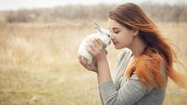 Wir lieben Tiere! Ihr auch? Lasst euch jetzt von den besten Brands inspiriere...