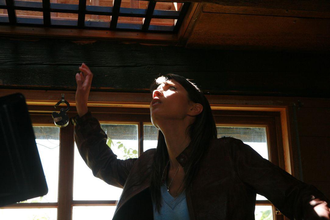 Kommt einem Serienkiller auf die Spur: die junge Anwältin Jenny (Lexa Doig) ...