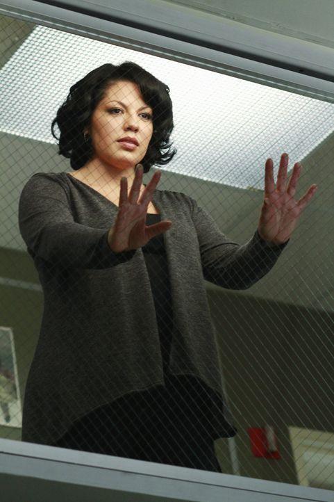 Callie (Sara Ramirez) und Arizona hatten einen schweren Autounfall und während Arizona mit ein paar Schrammen davon gekommen ist, liegt die schwang... - Bildquelle: ABC Studios