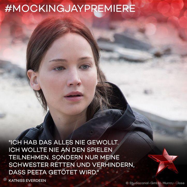 Katniss Zitat 1