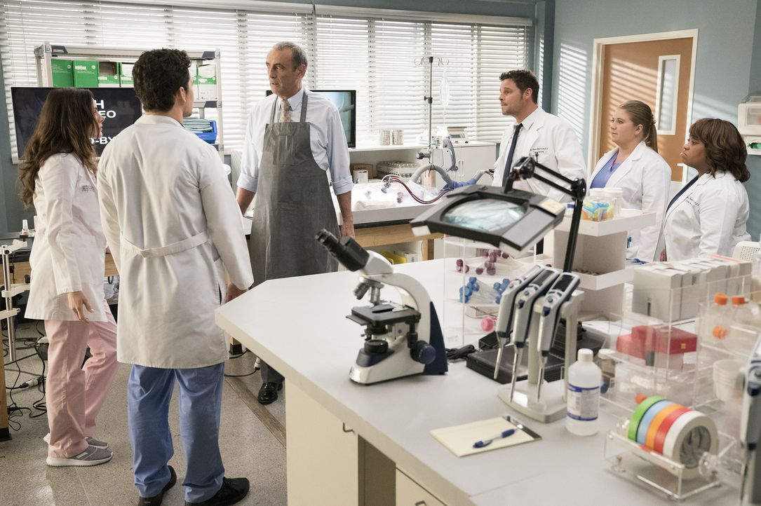 (v.l.n.r.) Dr. Carina DeLuca (Stefania Spampinato); Dr. Andrew DeLuca (Giacomo Gianniotti); Dr. Vincenzo DeLuca (Lorenzo Caccialanza); Dr. Alex Kare... - Bildquelle: Mitch Haaseth ABC Studios