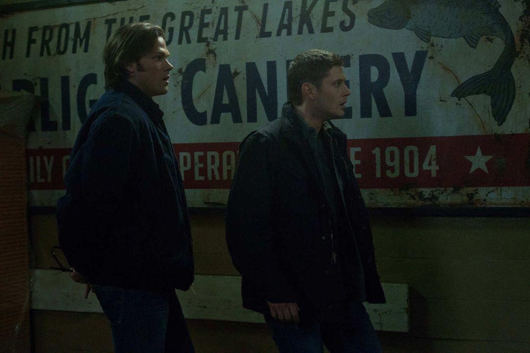 Als Sam (Jared Padalecki, l.) und Dean (Jensen Ackles, r.) klar wird, was Eve plant, ist es schon fast zu spät ... - Bildquelle: Warner Bros. Television