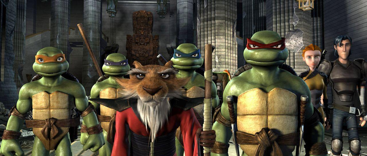 Meister Splinter, die mutierte Ratte, brachte seinen Schützlingen Leonardo (3. v. l.), Donatello (2. v. l.), Raphael (3. v. r.) und Michelangelo (l... - Bildquelle: TOBIS Filmkunst GmbH