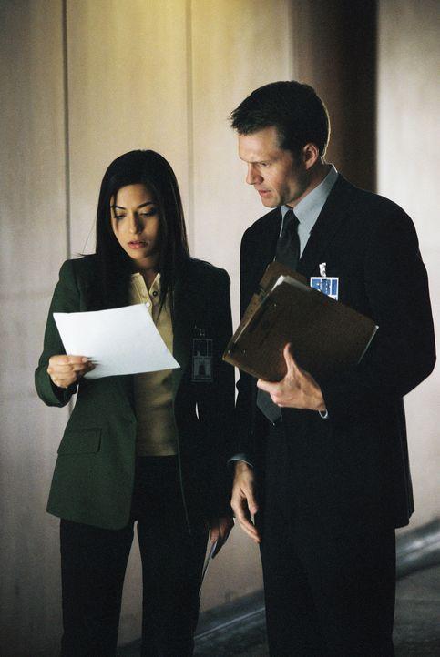 Sind für die Terrorbekämpfung zuständig: Jane Fulbar (Marisol Nichols, l.) und Frank Heinhoff (Ross Gibby, r.) ... - Bildquelle: TM &   2006 CBS Studios Inc. All Rights Reserved.