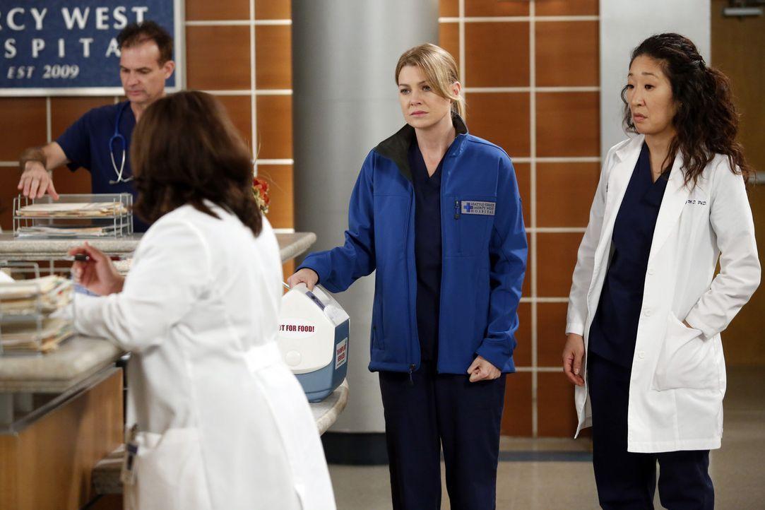 Während Arizona nach der Amputation ihres Beins weiterhin mit dem physischen aber auch psychischen Phantomschmerz zu kämpfen hat, herrscht im Kran... - Bildquelle: ABC Studios