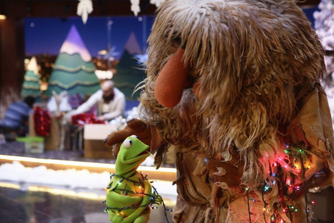 """Für die Sonderausgabe von """"Up Late with Miss Piggy"""" zur Weihnachtszeit laufen die Vorbereitungen auf Hochtouren. Kermit (l.) und Sweetsums (r.) gebe... - Bildquelle: Nicole Wilder ABC Studios"""