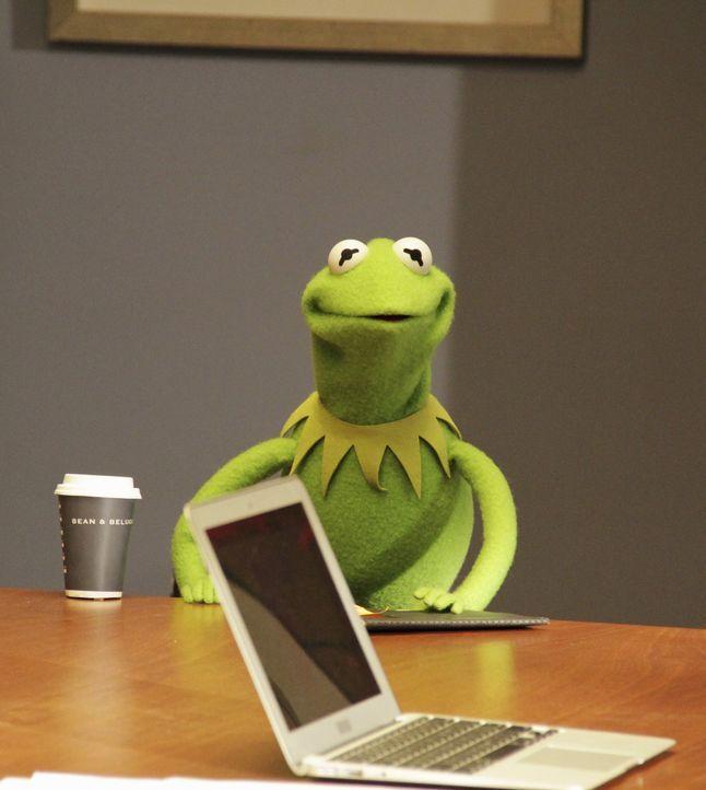Hat es mit Miss Piggy nicht immer leicht: Kermit ... - Bildquelle: Andrea McCallin ABC Studios