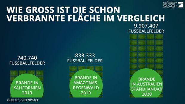 Grafik_Groeßenvergleich_Fußball_Grün-Blau