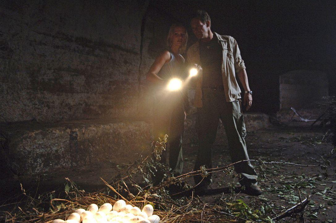 Krokodil-Invasion in Regensburg: In einer dunklen Höhle an der Donau entdecken Mitch (Christian Tramitz, r.) und Ann (Doreen Jacobi, l.) unzählige... - Bildquelle: Laurent Trümper ProSieben