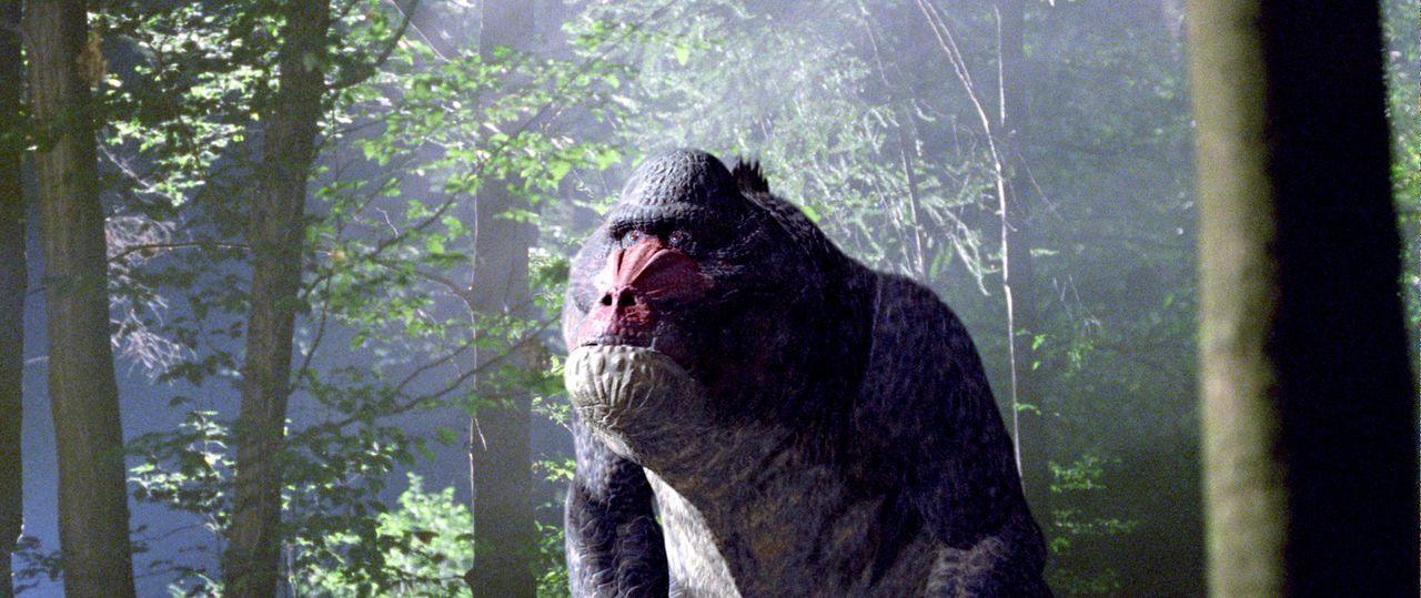 Mit Hilfe einer Zeitmaschine gelingt es reichen Abenteurern, in der Vergangenheit auf Dinosaurier-Jagd zu gehen. Allerdings müssen dabei zum Schutz... - Bildquelle: ApolloMedia