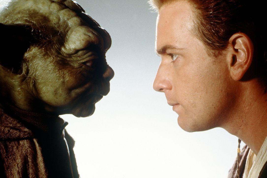 Auf Yoda (Frank Oz, l.) und Obi-Wan Kenobi (Ewan McGregor, r.) warten stürmische Zeiten ... - Bildquelle: 1999 Lucasfilm Ltd. & TM All rights reserved Used with permission