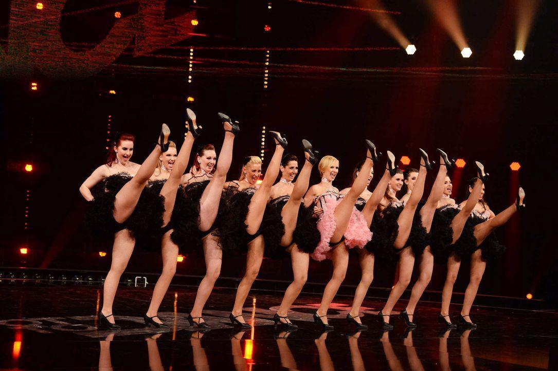 Got-To-Dance-KataMackh-Dance-Company-10-SAT1-ProSieben-Willi-Weber - Bildquelle: SAT.1/ProSieben/Willi Weber
