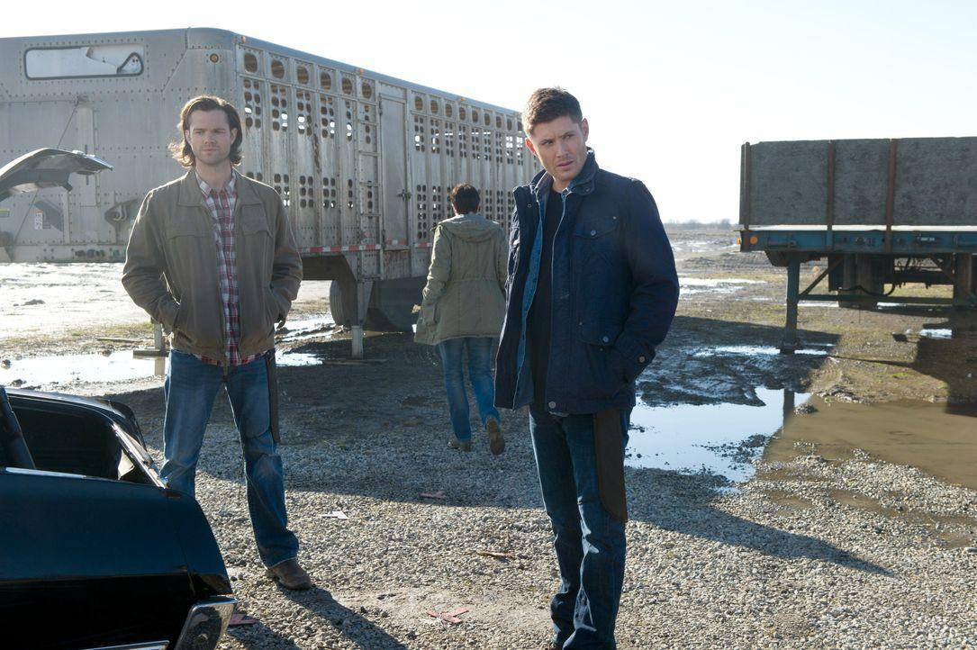 Noch ahnen Sam (Jared Padalecki, l.) und Dean (Jensen Ackles, r.) nicht, welche Spielchen das junge Mädchen spielt ... - Bildquelle: 2013 Warner Brothers