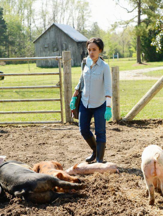 Die Nahrungsmittel werden immer knapper. Für Rebecca (Karla Crome) bleibt nur eine Lösung, um die bevorstehende Misere abzuwenden ... - Bildquelle: Brownie Harris 2014 CBS Broadcasting Inc. All Rights Reserved.