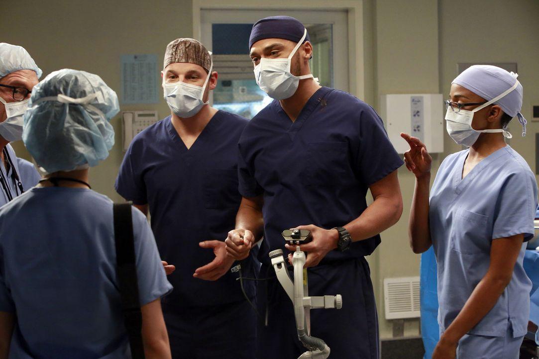 Der Konkurrenzkampf innerhalb der Ärzteschaft verstärkt sich: Jackson (Jesse Williams, 2.v.r.), Alex (Justin Chambers, M.) und Stephanie (Jerrika... - Bildquelle: ABC Studios