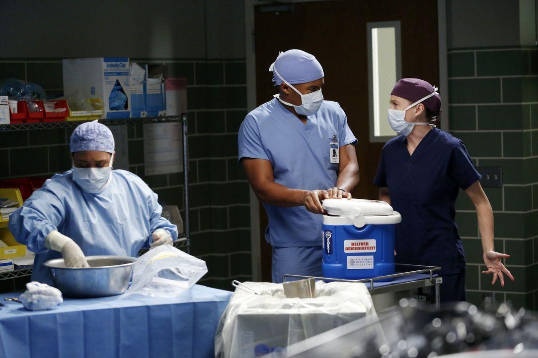 Während einer Operation mit Bailey (Chandra Wilson, l.) und Shane (Gaius Charles, M.) wird Meredith (Ellen Pompeo, r.) von Schwangerschaftshormonen... - Bildquelle: ABC Studios