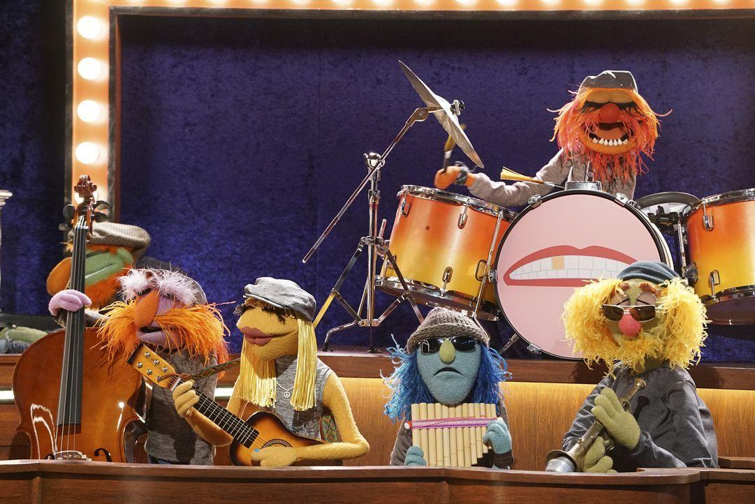 Sollen laut Miss Piggy und Josh Groban unplugged spielen - doch wird das ankommen? Dr. Goldzahn und die Electric Mayhem ... - Bildquelle: Eric McCandless ABC Studios