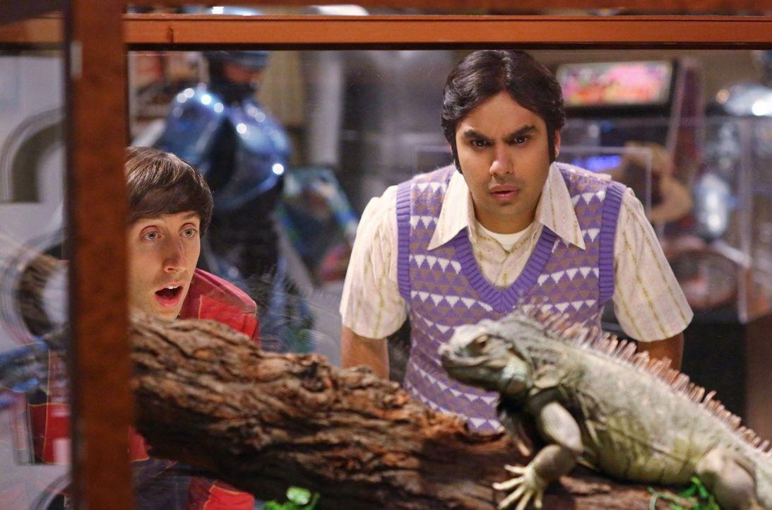 Können nicht glauben, was sie sehen: Howard (Simon Helberg, l.) und Raj (Kunal Nayyar, r.) ... - Bildquelle: Warner Brothers