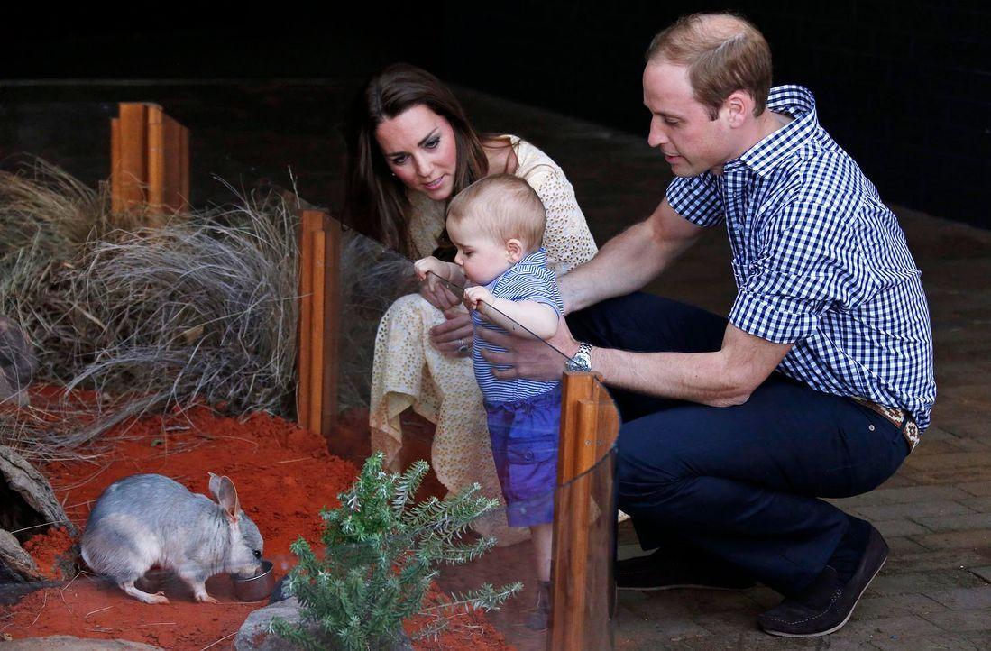 Prinz-George-von-Grossbritannien-14-04-20-dpa - Bildquelle: dpa