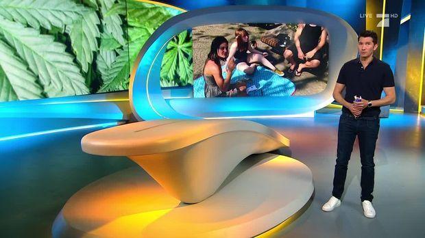 Galileo - Galileo - Mittwoch: Headshops - Das Legale Geschäft Mit Cannabis