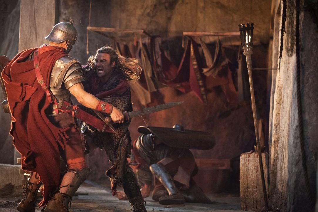 Zwischen Gannicus (Dustin Clare) und den Römern entbrennt ein Kampf auf Leben und Tod ... - Bildquelle: 2012 Starz Entertainment, LLC. All rights reserved.