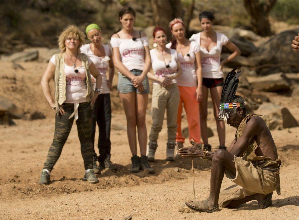 """Im Outback sehen sich """"Reality Queens"""" genau an, wie man Feuer macht, denn schon bald können sie diese Fähigkeit bei ihrem Roadtrip gebrauchen ... - Bildquelle: Guido Ohlenbostel ProSieben"""