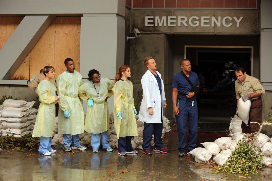 Nachdem sich der Sturm verzogen hat, haben die Ärzte Heather (Tina Majorino, l.), Shane (Gaius Charles, 2.v.l.), Stephanie (Jerrika Hinton, 3.v.l.)... - Bildquelle: ABC Studios