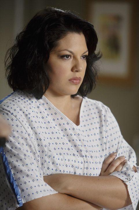 Callie (Sara Ramirez) ist von Mark schwanger. Da Mark unbedingt Kinder haben will und Callie seine beste Freundin ist, steht für ihn außer Frage,... - Bildquelle: ABC Studios