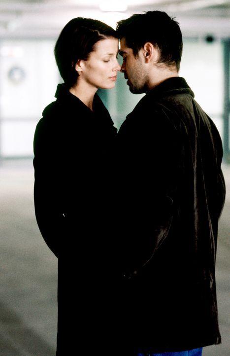 Schon bald verliebt sich James (Colin Farrell, r.) in seine härteste Konkurrentin Layla (Bridget Moynahan, l.). Doch ist die junge Frau eine Ostspi... - Bildquelle: Kerry Hayes SPYGLASS ENTERTAINMENT GROUP.LP.ALL RIGHTS RESERVED
