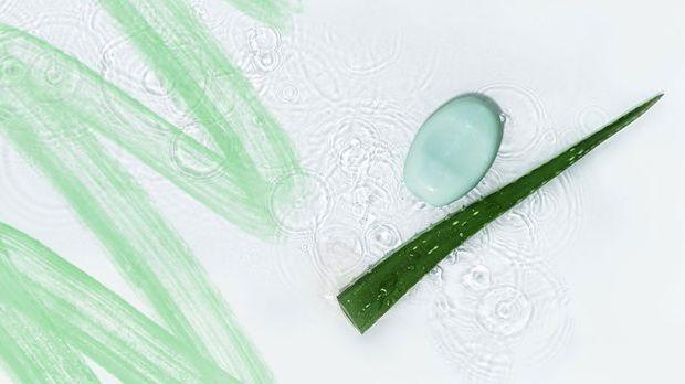 Aloe Vera ist feuchtigkeitsspendend und pflegend für deine Haut.