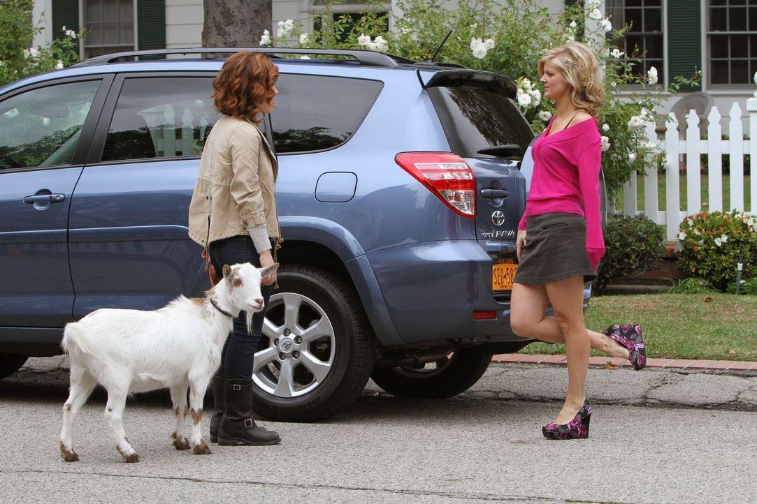 Je näher Tessa (Jane Levy, l.) Scott kennenlernt, desto weniger fühlt sie sich zu ihm hingezogen. Es funkt nicht. Schließlich trifft sie eine Ent... - Bildquelle: Warner Brothers