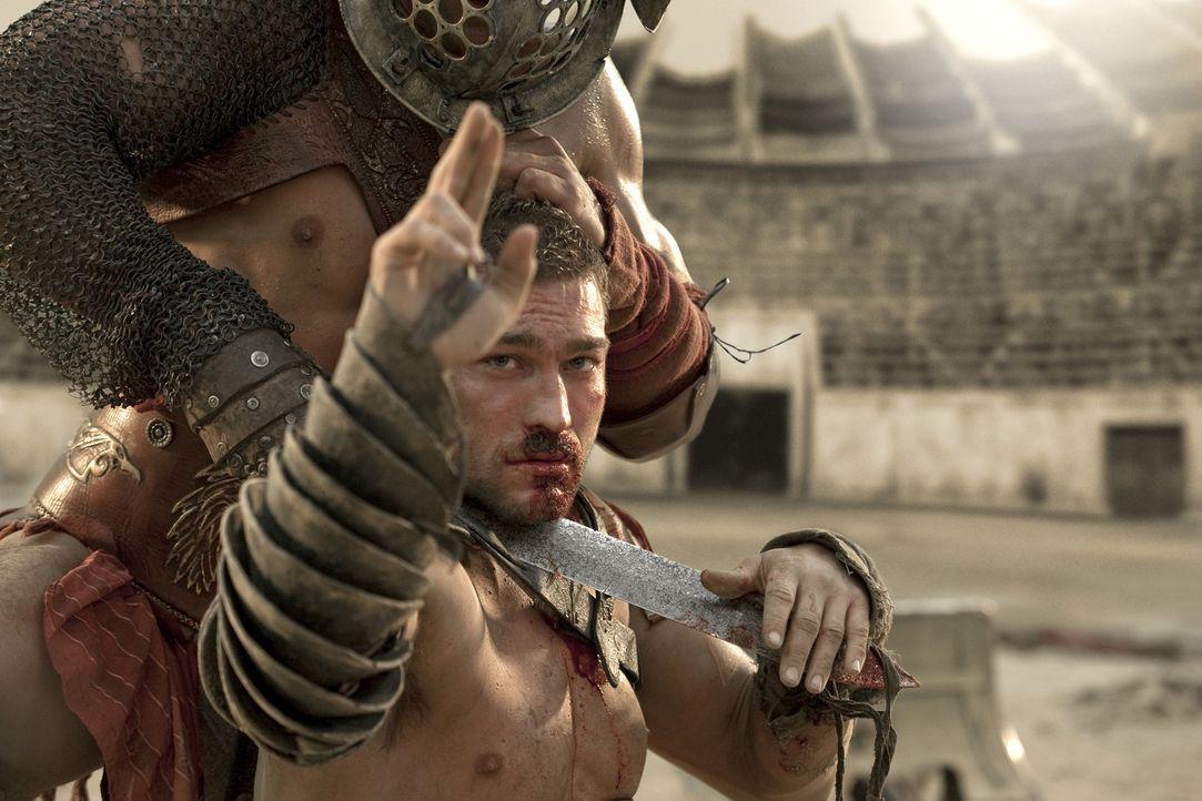 Lange Zeit gelingt es Spartakus (Andy Whitfield) Crixus standzuhalten, doch dann unterliegt er. Wider Erwarten streckt er zwei Finger in die Höhe,... - Bildquelle: 2010 Starz Entertainment, LLC