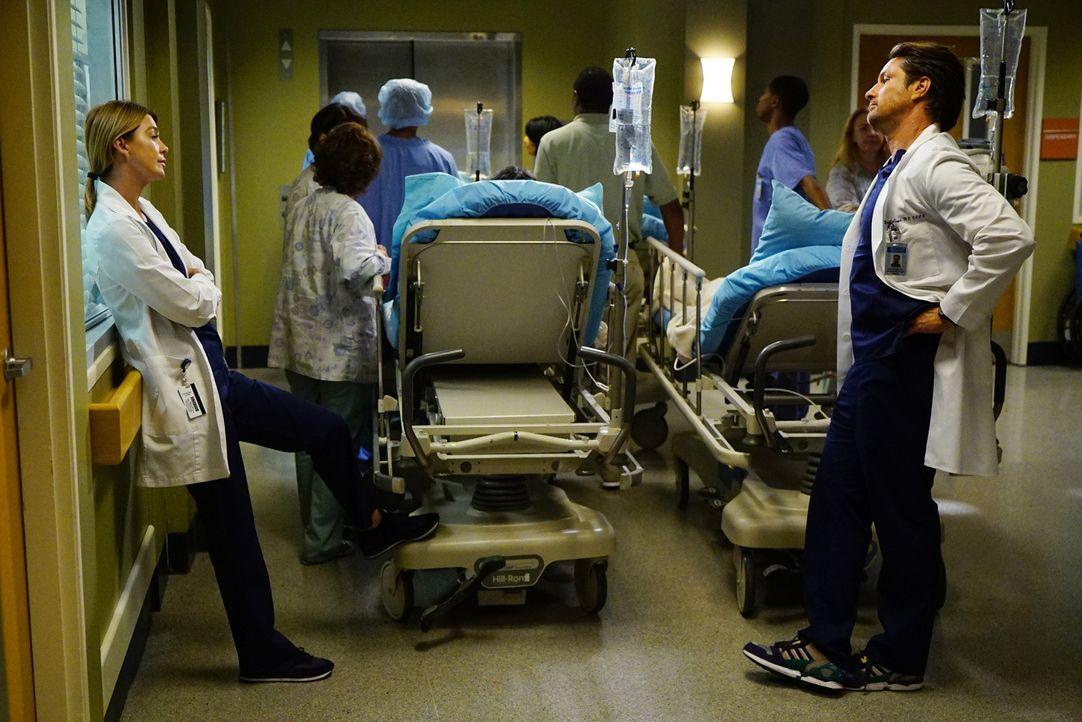 Während im Krankenhaus eine trauernde Gesellschaft eingeliefert wird, versucht Meredith (Ellen Pompeo, r.) alles, damit Riggs (Martin Henderson, l.)... - Bildquelle: Richard Cartwright 2016 American Broadcasting Companies, Inc. All rights reserved.